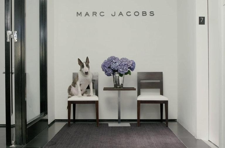 marc - Magazine cover