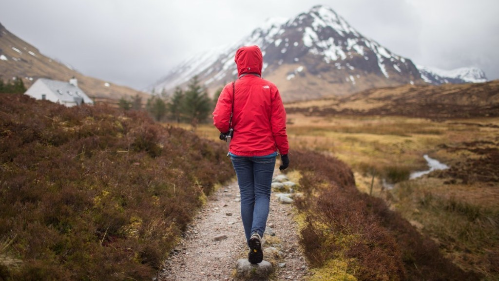 Why Walking Is the Best Thing You Can Do for Your Health