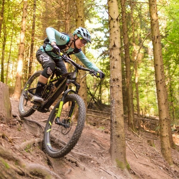The Rise of the Electric Mountain Bike