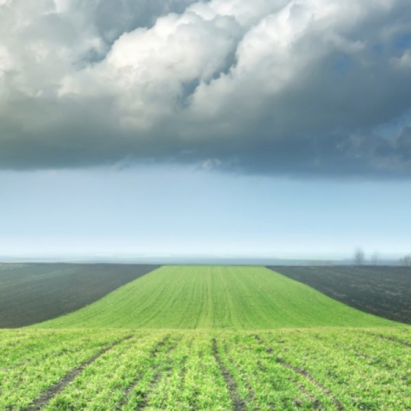 A 12-Step Approach for Big Agriculture