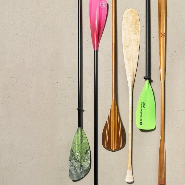 The Best Paddles of 2019
