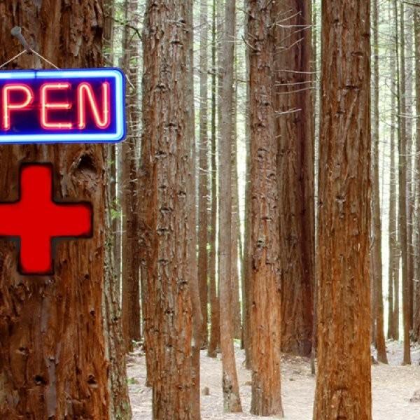 The Nature Prescription