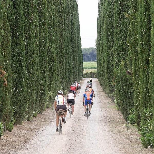 Burn and Bike: 7 Epic Cycle and Gourmet Foodie Trips