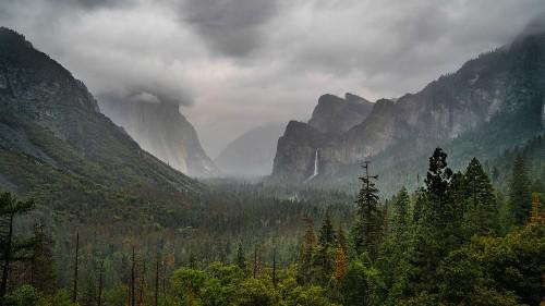 Life and Death on El Capitan