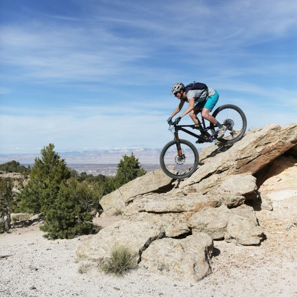 What We Learned From Our 2019 Bike Test