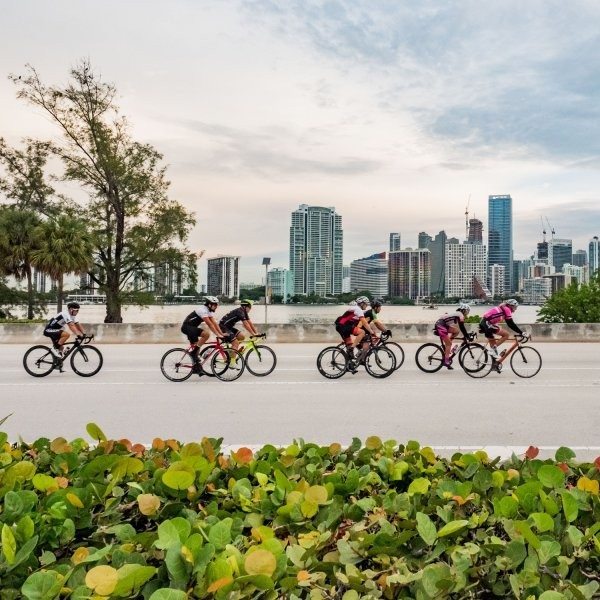 The Athlete's Guide to Miami