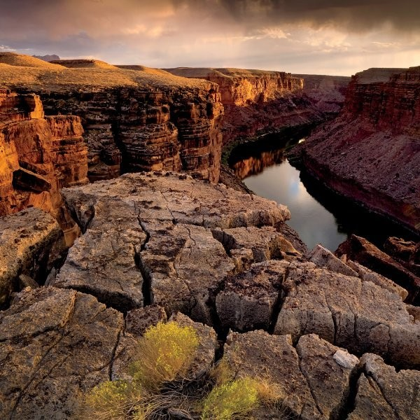 The Insider's Guide to the Grand Canyon