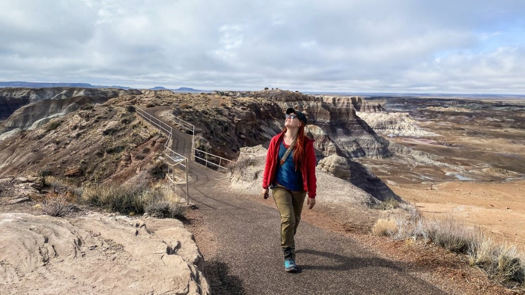 Travel Back in Time at Arizona's Petrified Forest