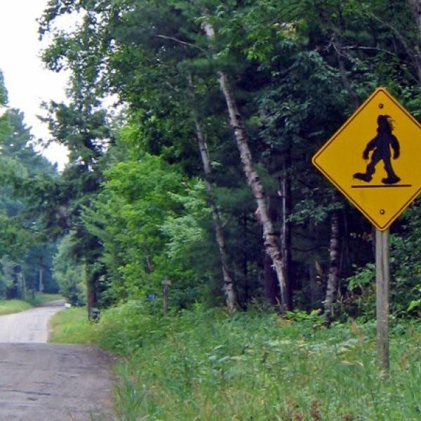 $10 Million Bigfoot Bounty Offered