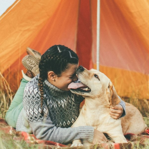 6 Perfect Gifts for Adventure Dogs