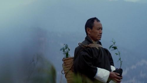 How Bhutan Went Carbon-Negative