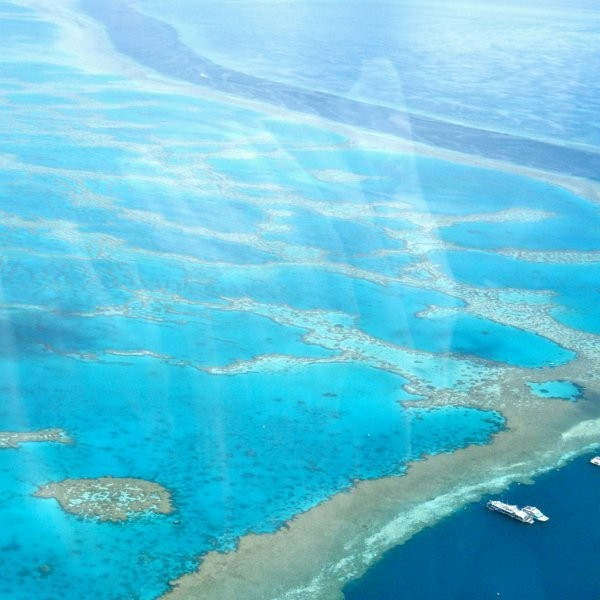 Australia Announces Plan to Save the Great Barrier Reef