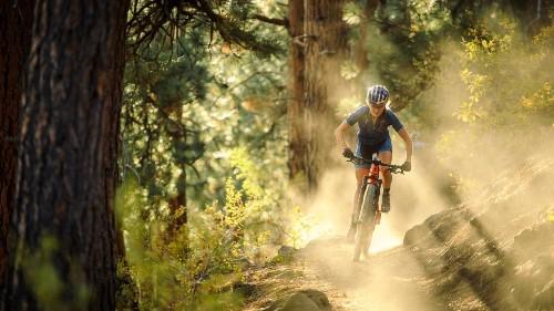 7 Tips for Beginner Mountain Bikers