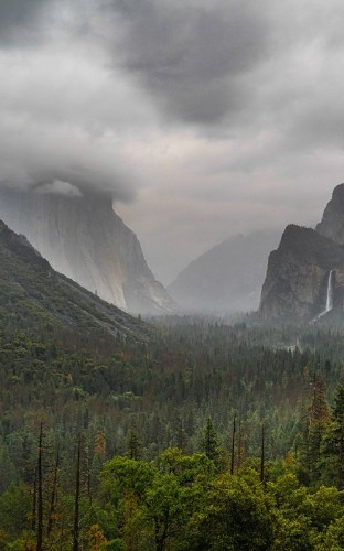 Life and Death on El Capitan