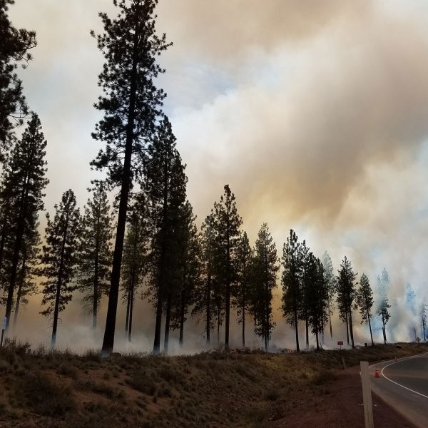 Should You Stop Exercising During Wildfire Season?