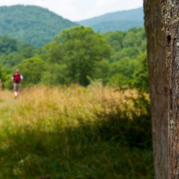 What are the Best Section-hikes in the Middle of the Appalachian Trail?