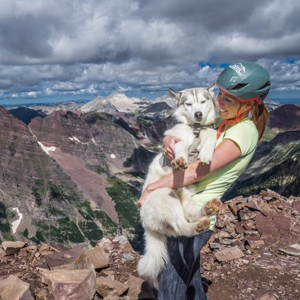 This Siberian Husky Summited All 58 of Colorado's 14ers