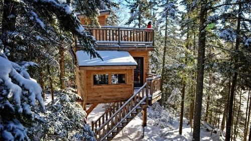 Treehouses: For Winter Too!