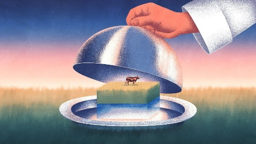 This Is the Beginning of the End of the Beef Industry