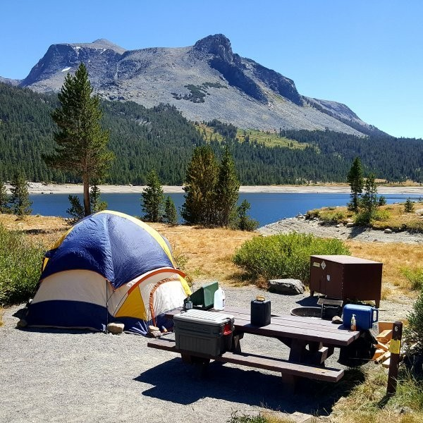 Where to Camp Next to These Popular National Parks