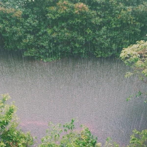 In Praise of Rain