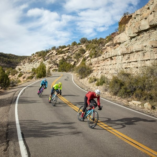 The Best Road Bikes from Our 2019 Test