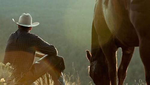 Jonathan Field: The Real-Life Horse Whisperer