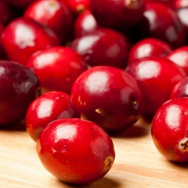 Cranberries May Be the Fountain of Youth