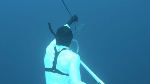 What a Spearfishing Competition Looks Like