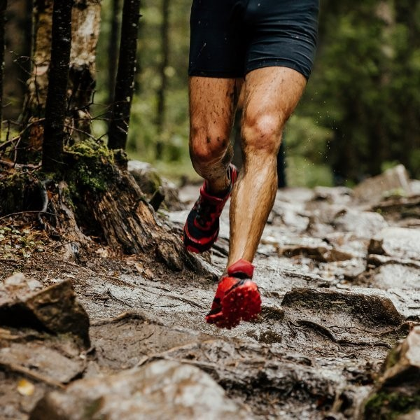 The Ultimate Guide to Foot and Lower-Leg Pain