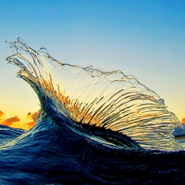 The Shorebreak Art of Clark Little