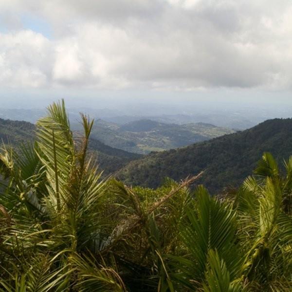 What Are Puerto Rico's Best Outdoor Activities?