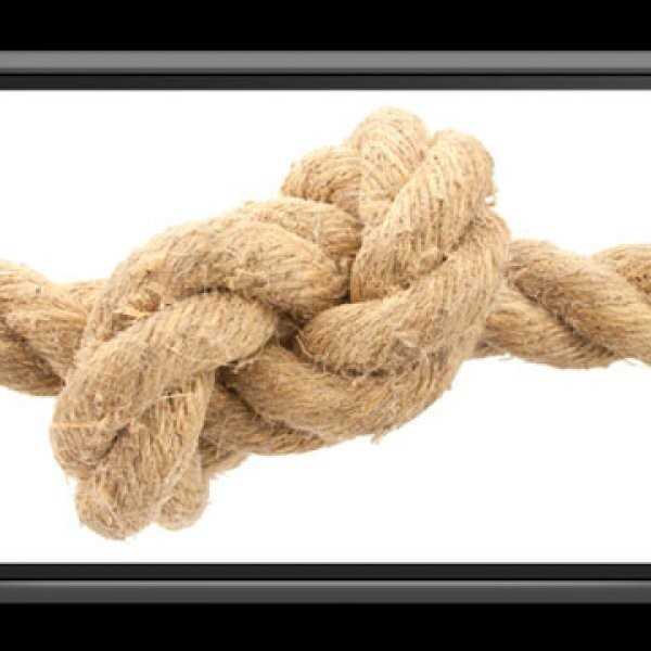 What Are the Best Knot-Tying Apps?