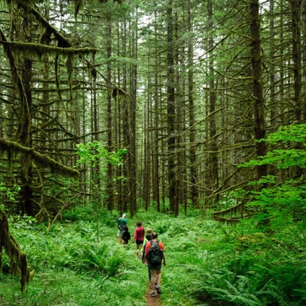 Study: Hiking Makes You Happier
