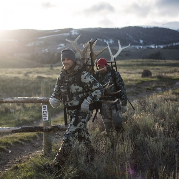 Why Some People Obsessively Hunt Elk Antlers