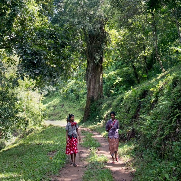 Visit the Closest Thing to Paradise in India
