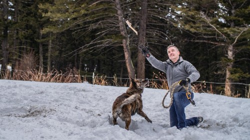 Video: How to Keep Your Adventure Dog Healthy and Happy