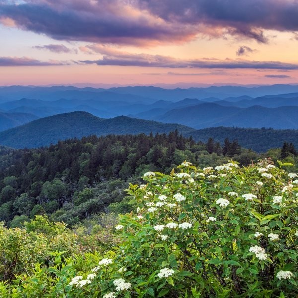 The Ultimate Great Smoky Mountains Travel Guide