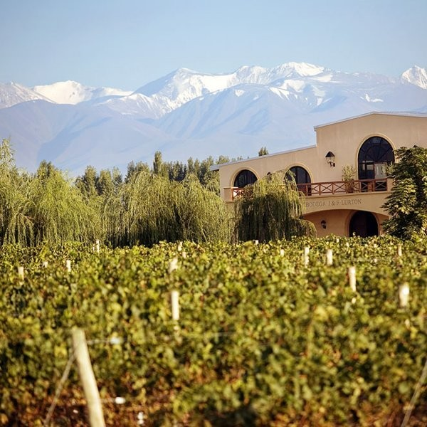 What's the Best Way to Bike Through Argentina's Wine Region?