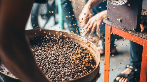 We Tried Roasting Coffee. Learn from Our Mistakes.