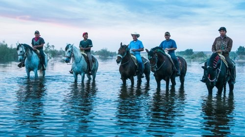 Bringing The Colorado River Back to Life