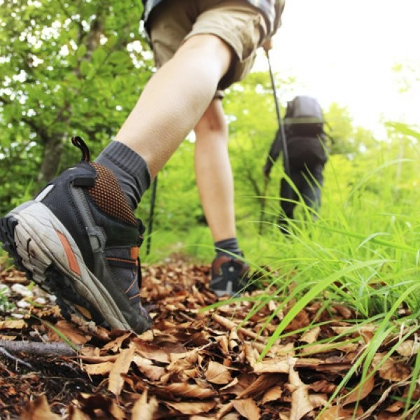 The Best Inexpensive Light Hikers