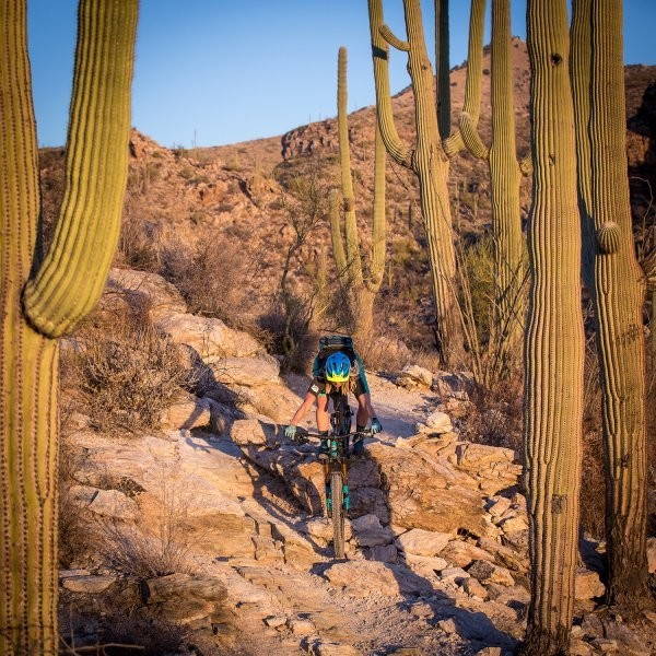Book Your Winter Riding Trip to Tucson Now