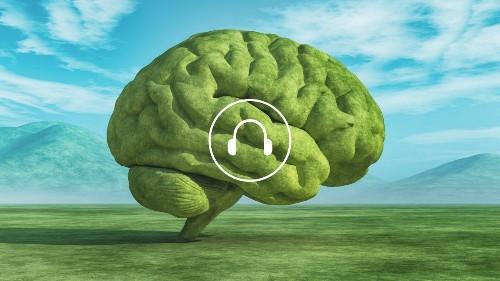 How Nature Heals an Injured Brain