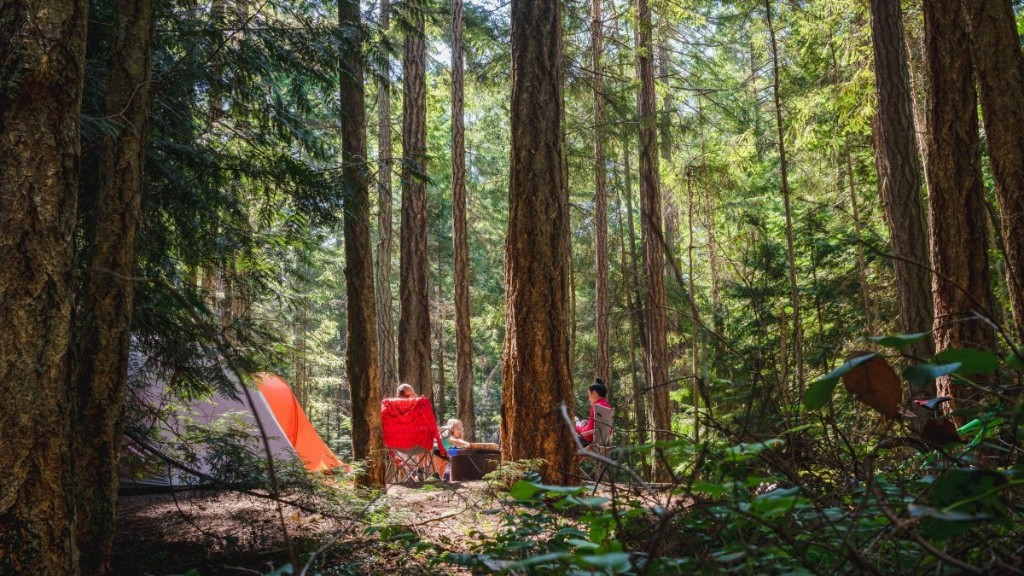 The Summer Gear We're Eyeing at Backcountry's Sale