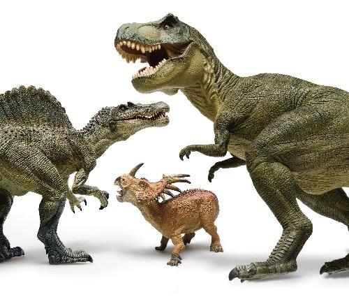FYI: Did Dinosaurs Get The Flu?