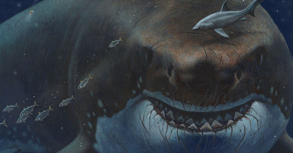 Could an ancient megashark still lurk in the deep seas?