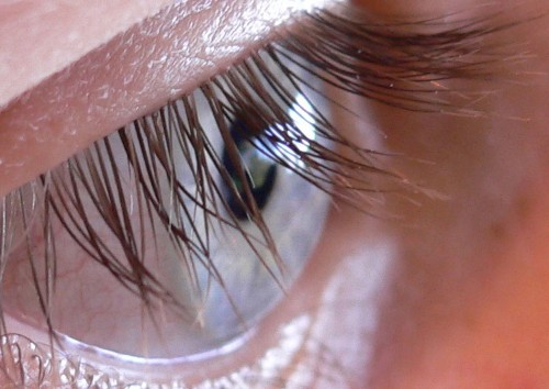 Why Do We Have Eyelashes?