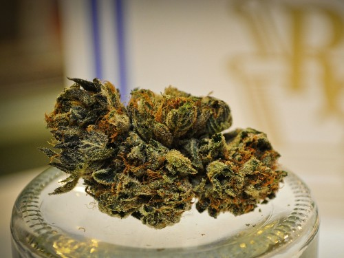 Chemical In Marijuana Could Build Strong Bones