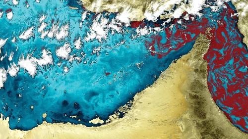 Big Pic: 'Red Tide' Algae In Bloom